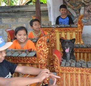 b ONLY IN BALI